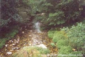 Río Duerna